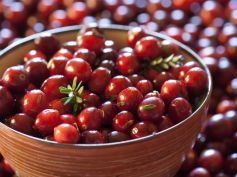 Calorie Diet For Weight Loss Cranberries