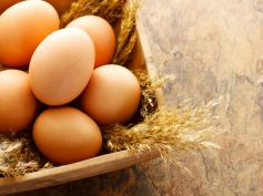 Calorie Diet For Weight Loss Eggs