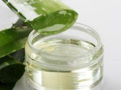 Dissolve Kidney Stones With Herbs Aloe vera