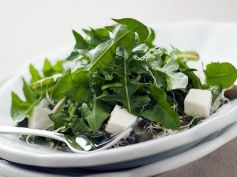 Dissolve Kidney Stones With Herbs Dandelion