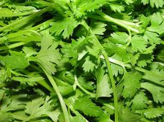 Home Remedies To Cure Indigestion Coriander