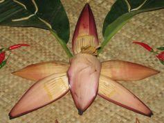 PUSHPITA- A Delectable Banana Blossom Delicacy