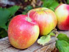 Foods To Control High Sugar Levels Apple