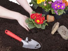 How To Pick Up Garden-Friendly Soil