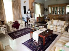 Install Carpets and Rugs