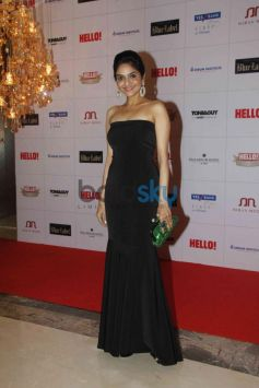 Madhubala at Hello Awards 2013