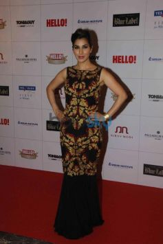 Sophie Choudry at Hello Awards 2013