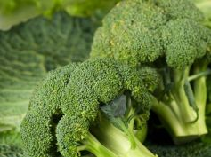 Winter Immunity Boosting Foods Broccoli