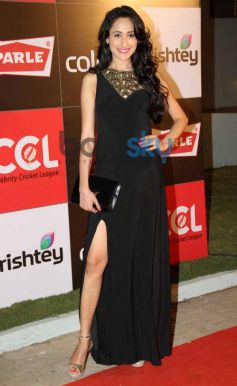 CCL Inaguration Red Carpet 2014
