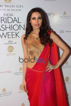 Celebs at IBFW 2013 Day 5 Show