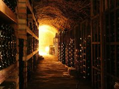 Clear the wine cellar