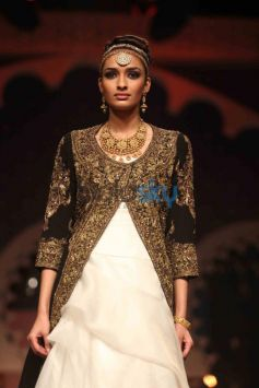 IBFW 2013 Raghavendra Rathore Show Day 3