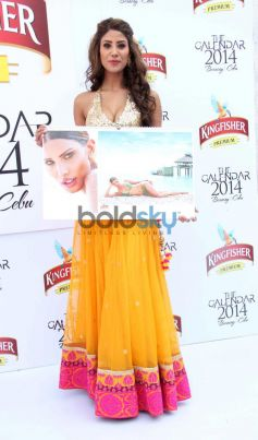 Launch of Kingfisher Calendar 2014