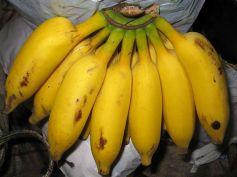 Things To Worship Lord Shiva Bananas