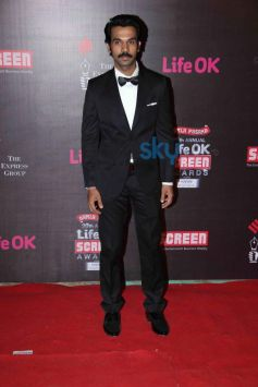 Celebs stuns at 20th Annual Sreen Awards 2014