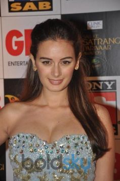 Evelyn Sharma Looks stunning at Sab Parivaar Awards 2014