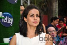 Gul Panag stuns during Tetley Green Tea Launch event