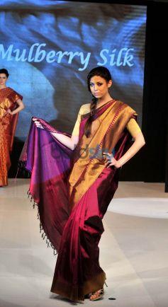 Silk Mark Vanya Silk Expo 2014 in Delhi
