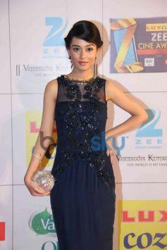 Amrita Rao stuns during Zee Cine Awards 2014