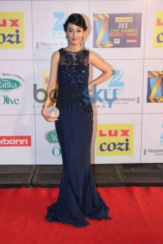 Amrita Rao stuns at Zee Cine Awards 2014