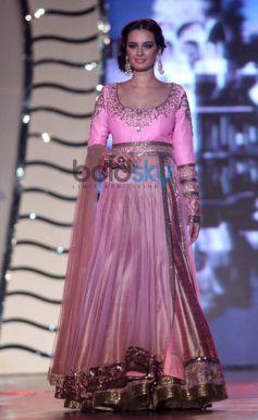 Evelyn Sharma walk for Manish Malhotra Event