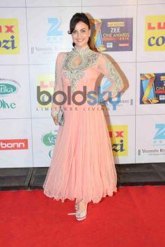 Eli Avram stuns in Pink at Zee Cine Awards 2014