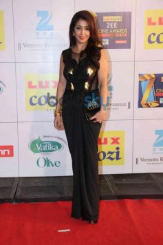 Krishika Lulla stuns at Zee Cine Awards 2014