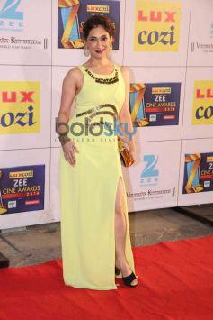 Lucky Morani stuns at Zee Cine Awards 2014