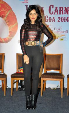 Neha Sharma stuns at Announcement of Goa Carnival 2014