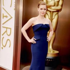 Amy Adams stuns on red carpet at Oscars 2014
