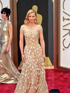Cate Blanchett stuns at Oscars 2014