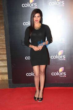 Priyanka Chopra at star studded colors party