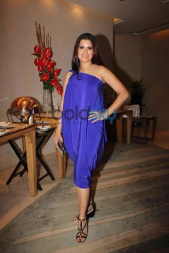 Sona Mohpatra at NRI of the year Awards Ceremony