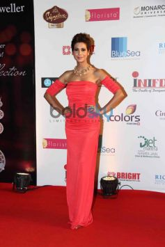 Celebs stuns at Femina Miss India 2014