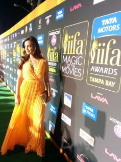 Celebs stuns at Tata Motors IIFA Awards 2014