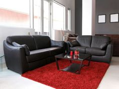 Dos & Donts To Maintain Leather Couch