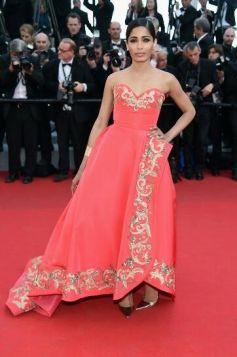 Freida Pinto stuns at Cannes 2014