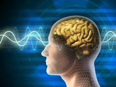 Boost brain