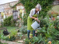For Your Vegetable Garden