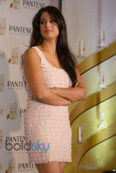 Mahi Gill stuns at Pentene Event