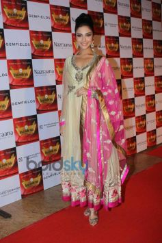 Celebs stuns at Retail Jeweller India Awards 2014