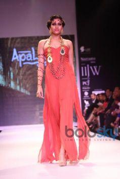 IIJW 2014 Apala by Sumit