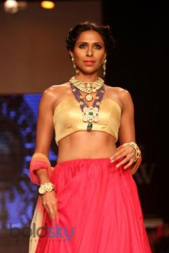 IIJW 2014 Shobha Shringar Collection