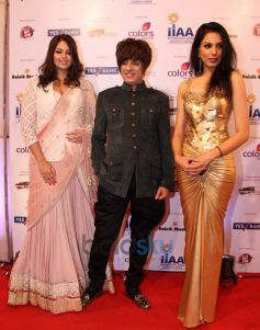 International Indian Achievers Awards 2014