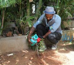 Remo Plants Tree for World Enviornment Day