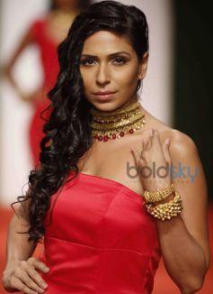 Indian Bridal Fashion Week 2014