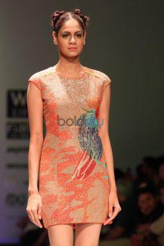 Wills India Fashion Week 2015 -  Rahul Singh