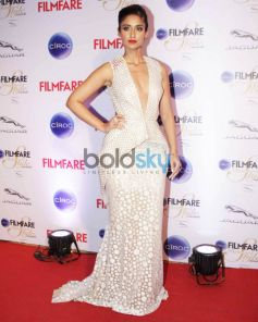 Filmfare Glamour & Style Awards 2015