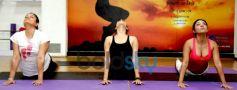 Anusmriti,Marisa And Ekta Jain Did Yoga On World Yoga Day in Mumbai