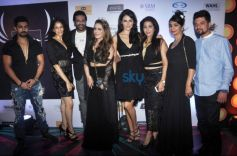 Grand Finale Party Of Provogue Mr.India 2015